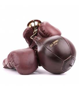 Pack Boxing Gloves and Speed Bag