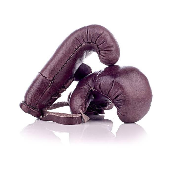 mini gants de boxe 100 cuir de vachette all sport vintage. Black Bedroom Furniture Sets. Home Design Ideas